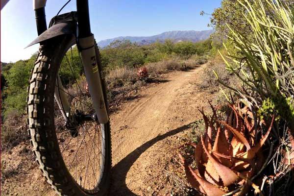mtb-trails
